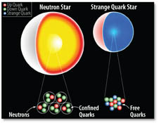Neutron Star and Strange Quark Star