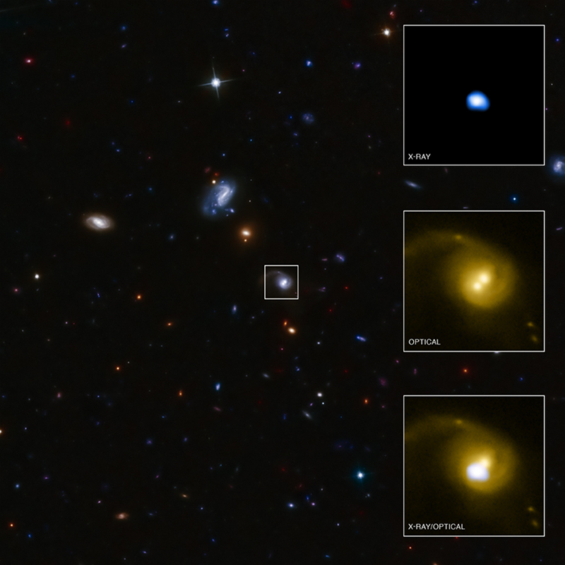 Chandra/HST images of CID 42