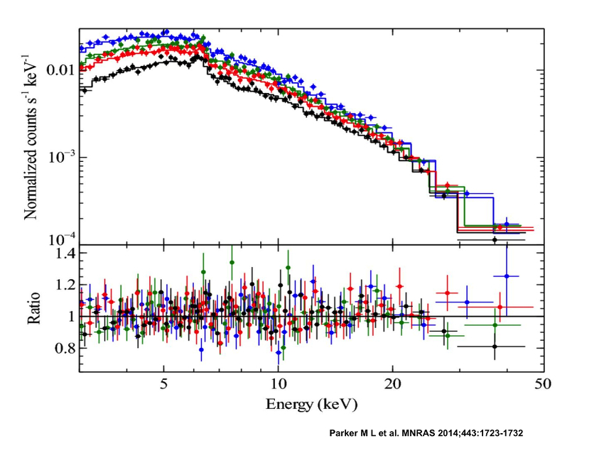 NuSTAR spectrum of the black hole in Mrk 335 plus theoretical model of reflection from the inner accretion disk