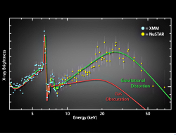 XMM Newton and NuSTAR spectrum of rotating black hole
