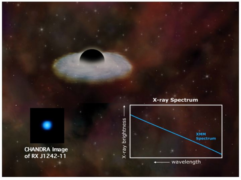 Stellar disruption by a black hole
