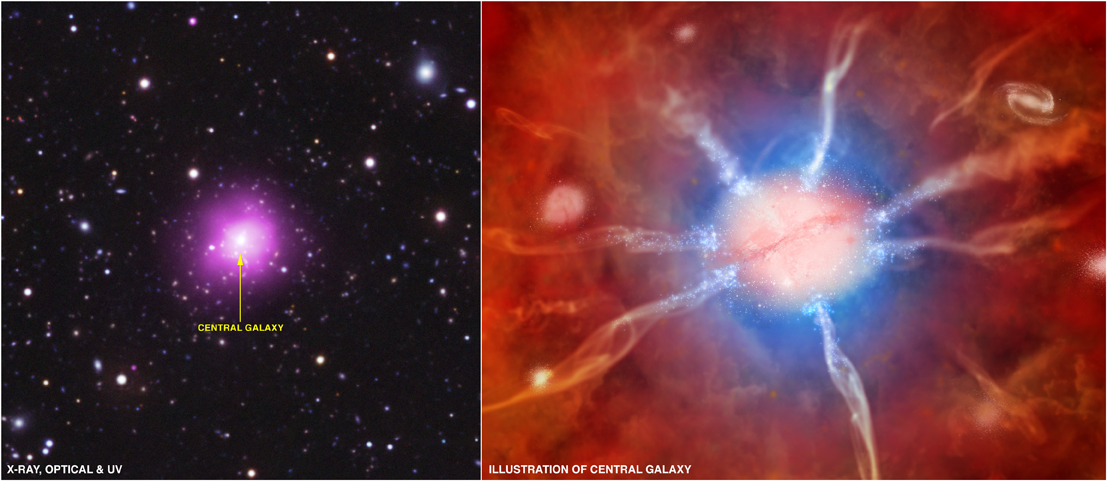 Left: composite optical/UV/X-ray image of Phoenix Cluster; Right: Artist conception of the center of the cluster
