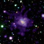 CHANDRA and VLT observations of an old, massive cluster