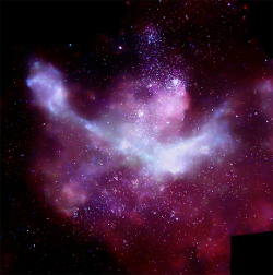 An X-ray image of the Carina Nebula by the Chandra X-ray Observatory