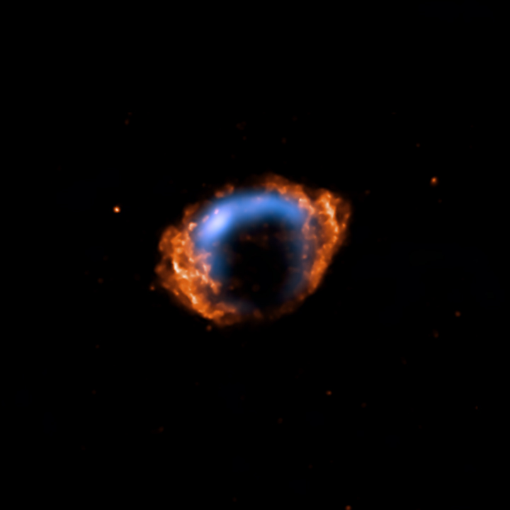 VLA and Chandra composite of G1.9+0.3.