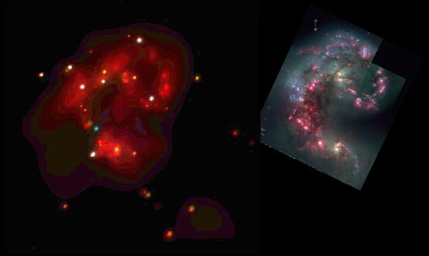 ACIS image of the Antennae Galaxies
