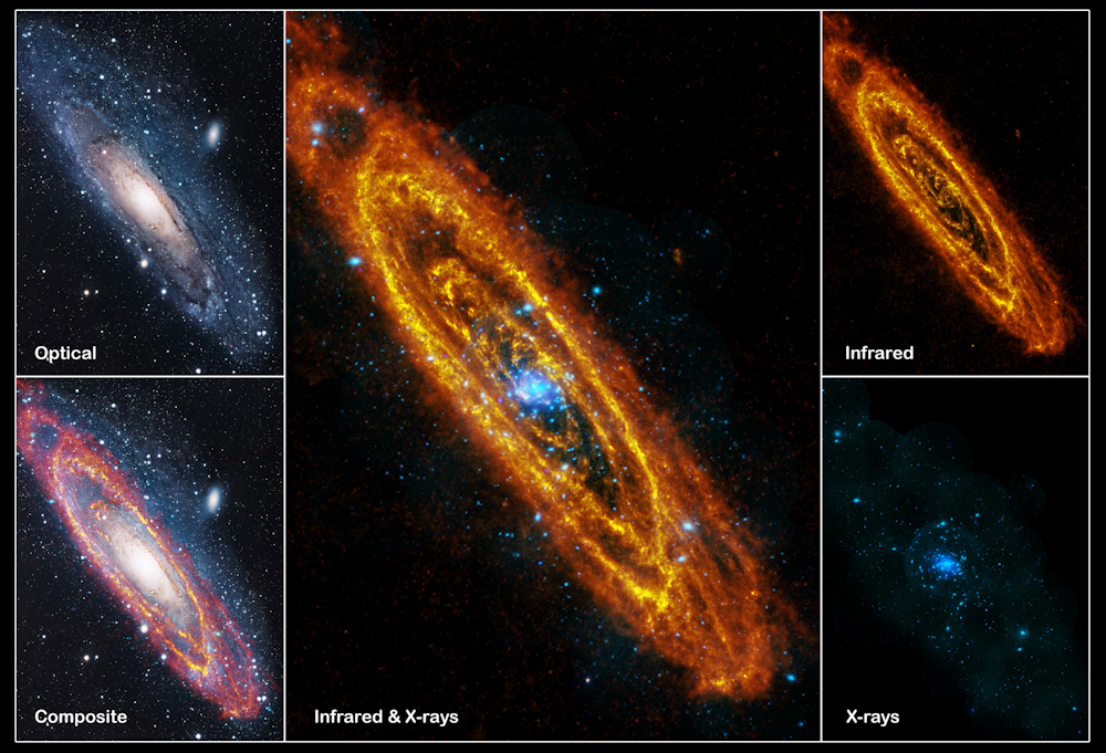Optical, IR and X-ray views of the Andromeda Galaxy