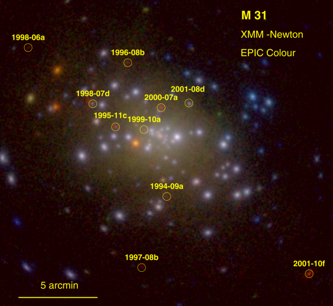 XMM Newton Observations of Novae in M31