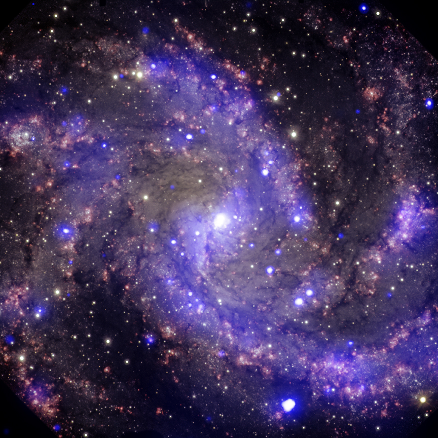 Composite X-ray/optical image of NGC 6946