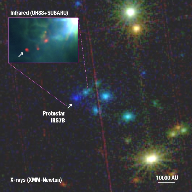 XMM Newton detection of a class0 protostar