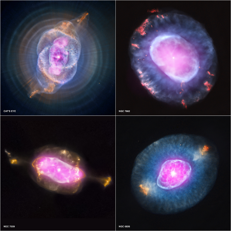 Sample from the Chandra Planetary Nebula Survey