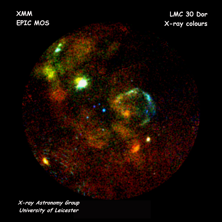 XMM-Newton MOS First Light - 30 Dor